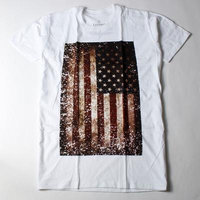 プリントTシャツ 星条旗 アメリカ 国旗 メンズ/レディース/半袖/おもしろ/おしゃれ ebi-0307